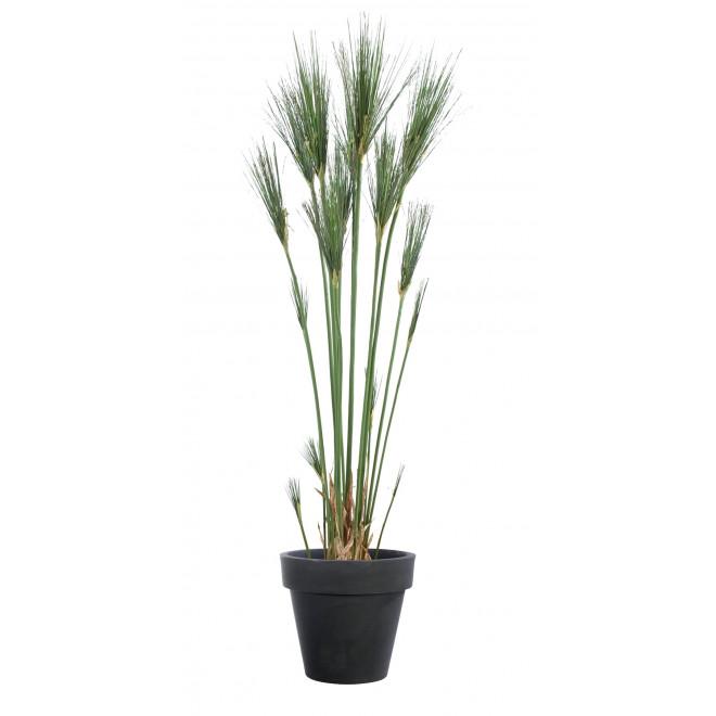 papyrus artificiel cyperus 125 et 155 cm fleurs des champs artificielles reflets nature lyon. Black Bedroom Furniture Sets. Home Design Ideas