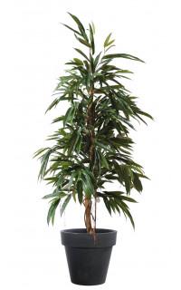 FICUS artificiel ALII bush royal 160 et 190 cm