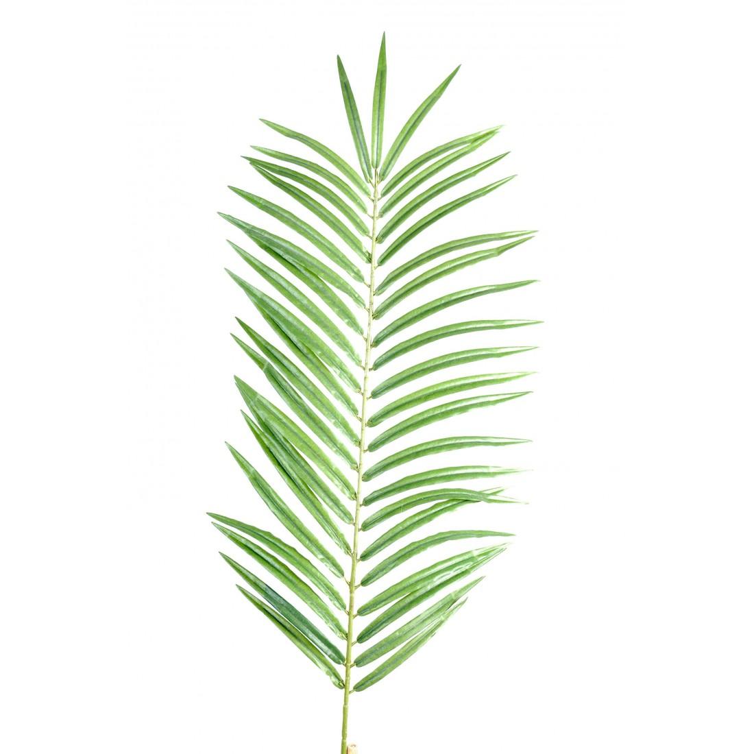 Feuille palmier phoenix 60 et 110 cm feuillages for Feuille de palmier deco