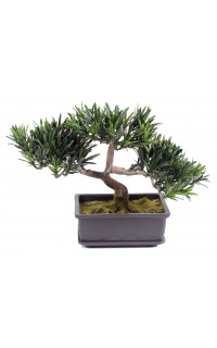 PODOCARPUS BONSAI artificiel 22 cm
