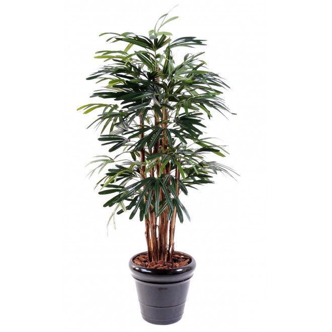 PALMIER artificiel RAPHIS LADY PALM 150 à 210 cm