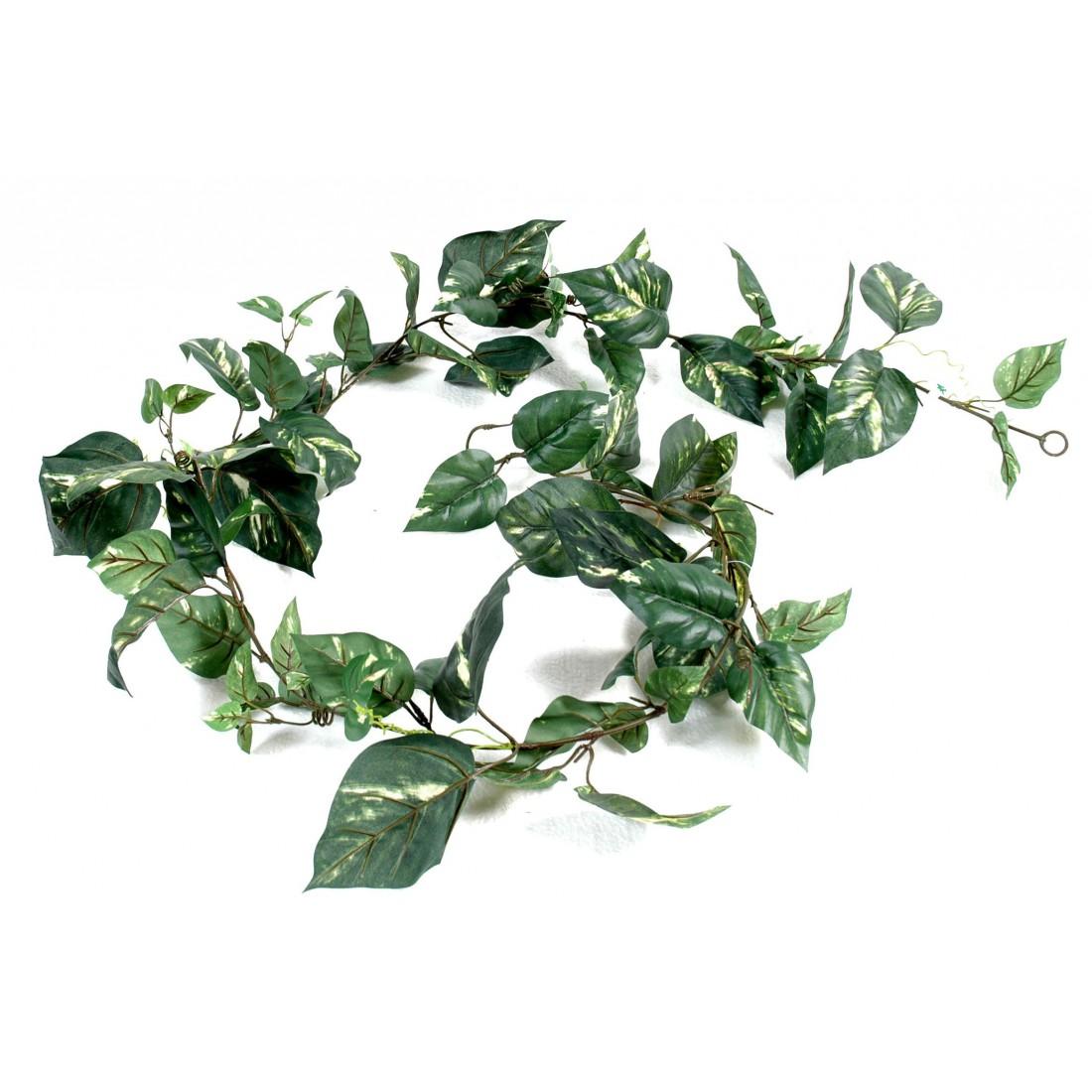 Guirlande pothos artificielle 180 cm plantes for Plantes artificielles lyon