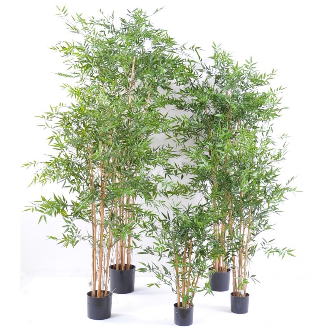 Bambou Artificiel Japenese Plast 90 à 320 Cm Bambous