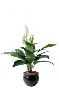 SPATHIPHILUM artificiel  3 fleurs 60 cm