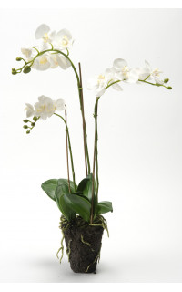 composition Phalaenopsis ORCHIDEE artificielle 80 cm