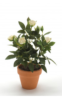 ROSIER mini artificiel EN POT 26 cm