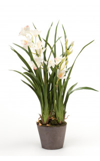 composition Cymbidium ORCHIDEE artificielle 78 cm