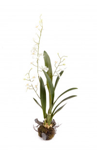 ORCHIDEE artificielle ONCIDIUM 65 cm