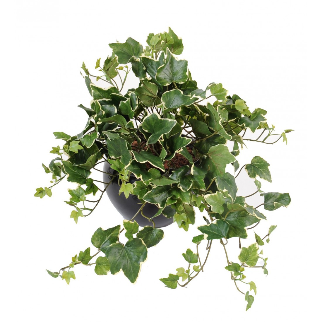 Lierre gala artificiel 50 cm plantes artificielles for Plantes artificielles lyon