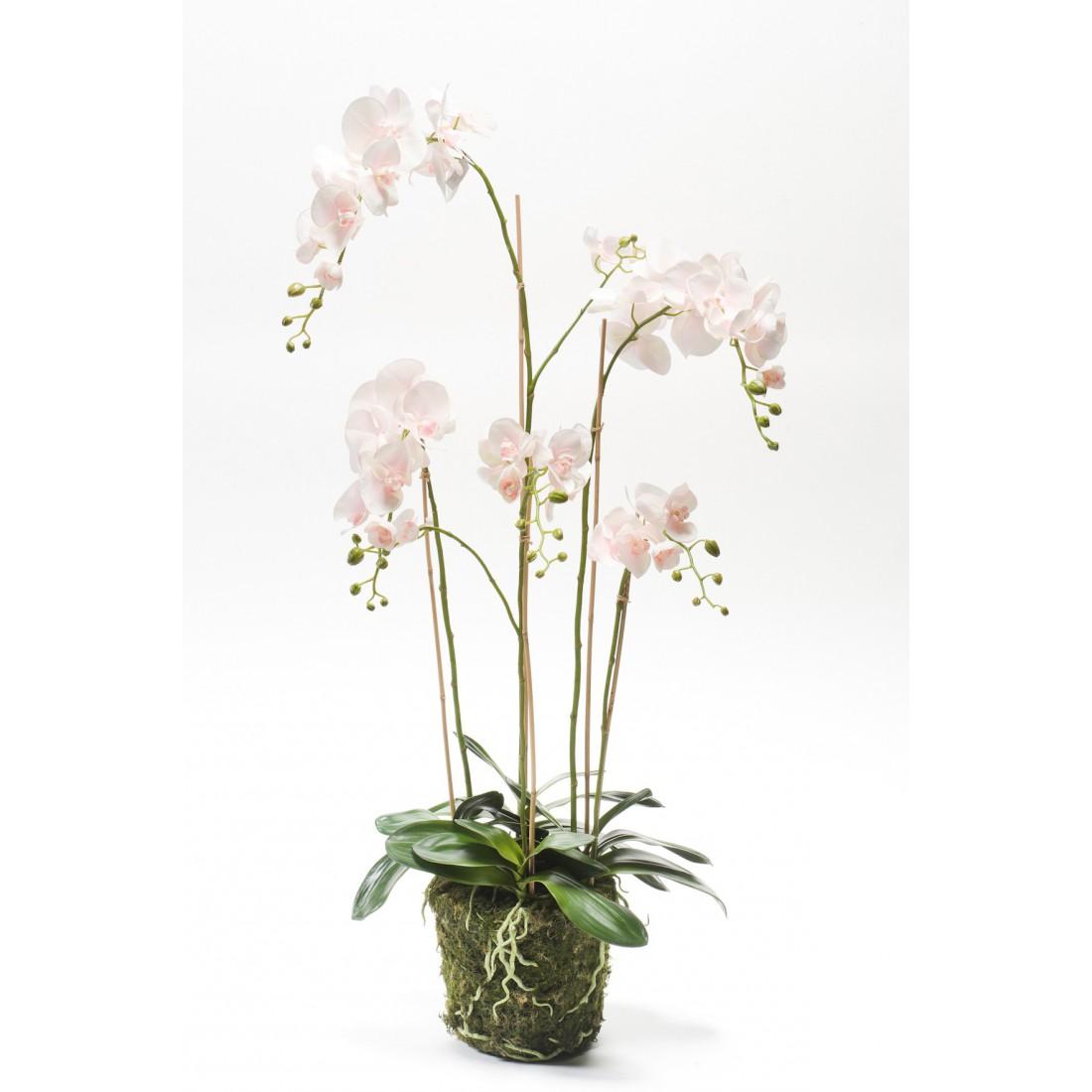 composition phalaenopsis orchidee artificielle 130 cm. Black Bedroom Furniture Sets. Home Design Ideas