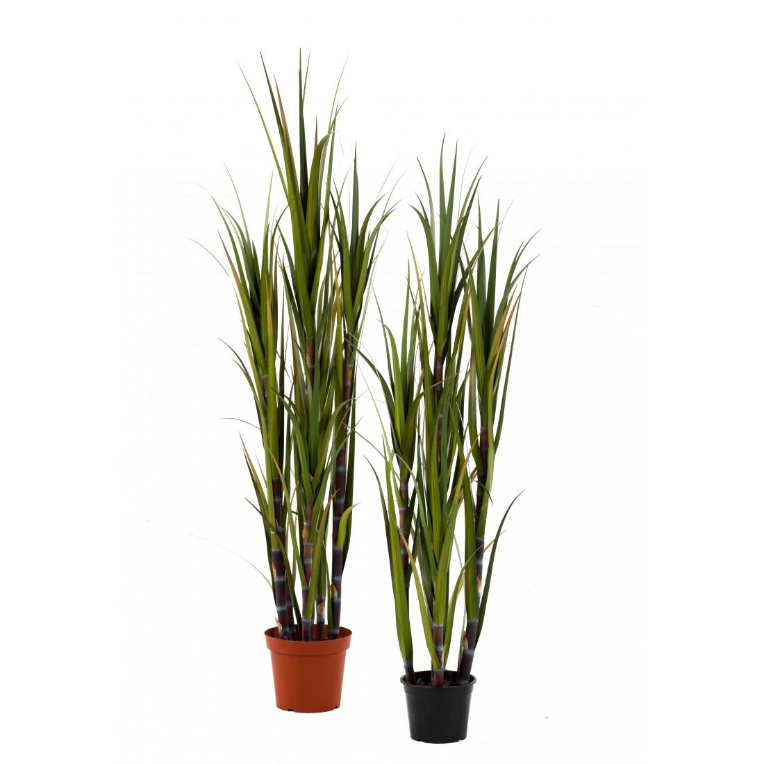 Canne a sucre artificielles 150 et 210 cm gramin es for Plantes artificielles lyon