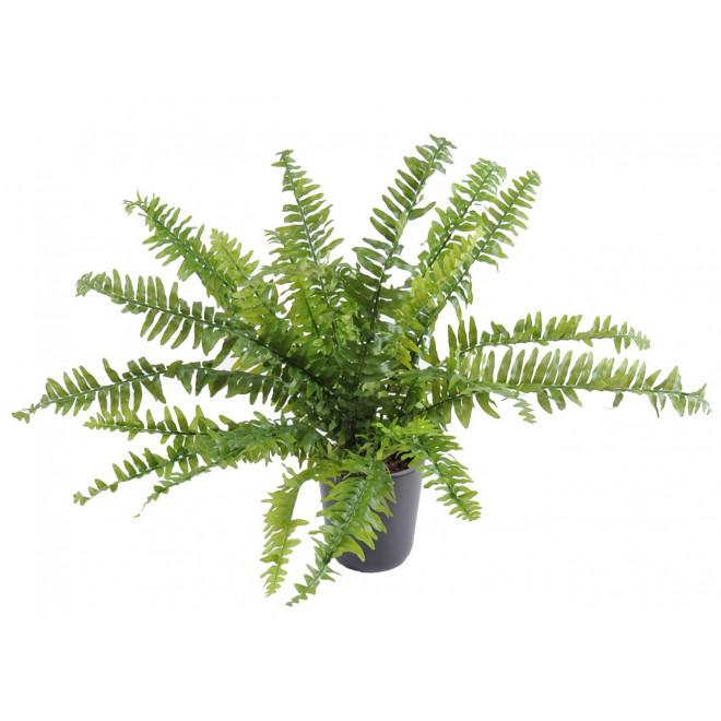 Fougere artificielle boston fine diam 65 et 80 cm plantes - Fougere de boston depolluante ...