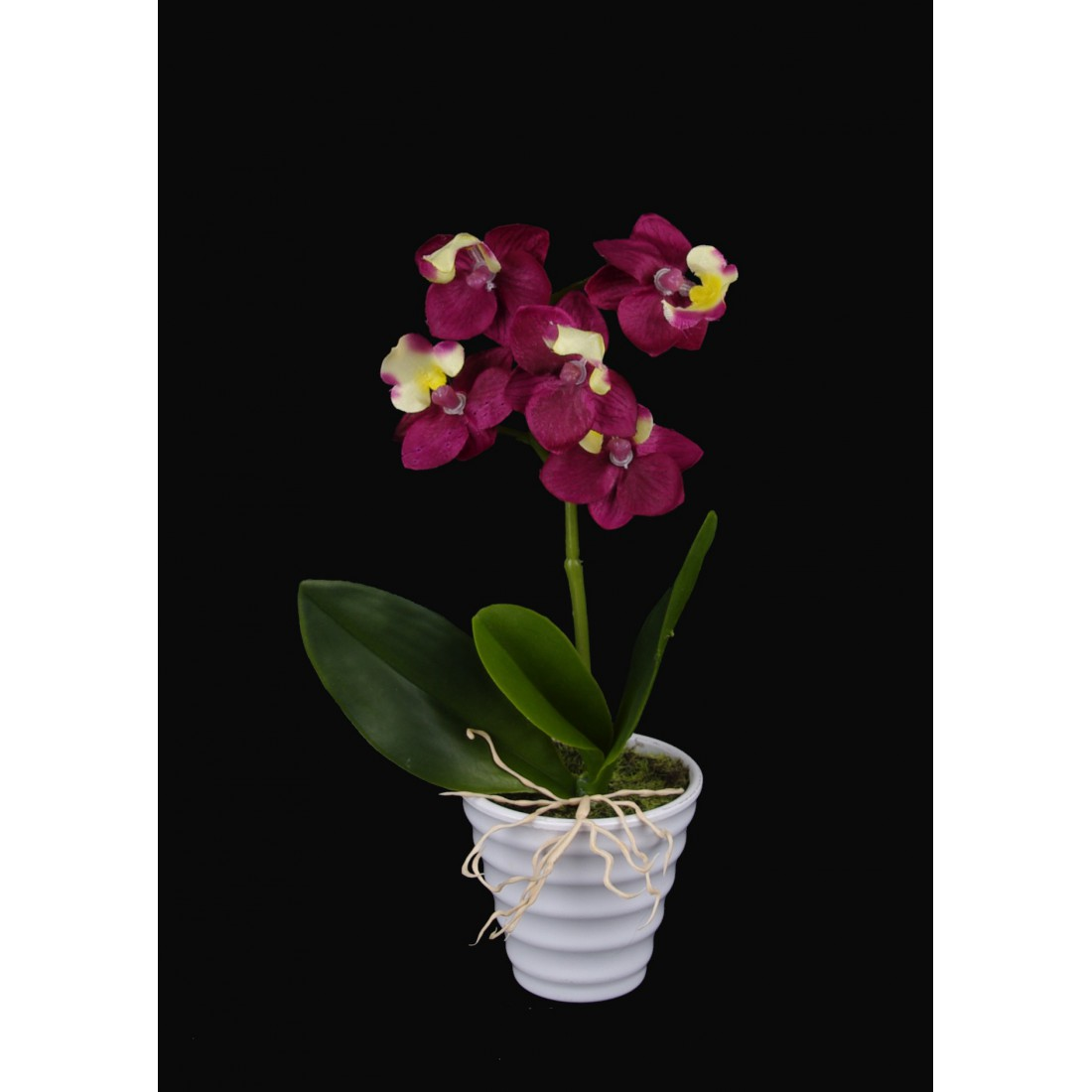phalaenopsis orchidee artificielle 20 cm en pot. Black Bedroom Furniture Sets. Home Design Ideas