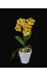 phalaenopsis ORCHIDEE artificielle 20 cm en pot