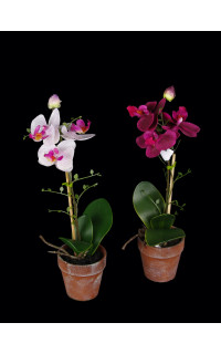 phalaenopsis ORCHIDEE artificielle 35 cm