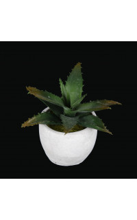 AGAVE artificielle en pot 13 cm