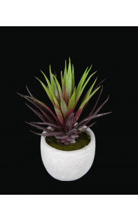 AGAVE artificielle burgundy en pot 18 cm