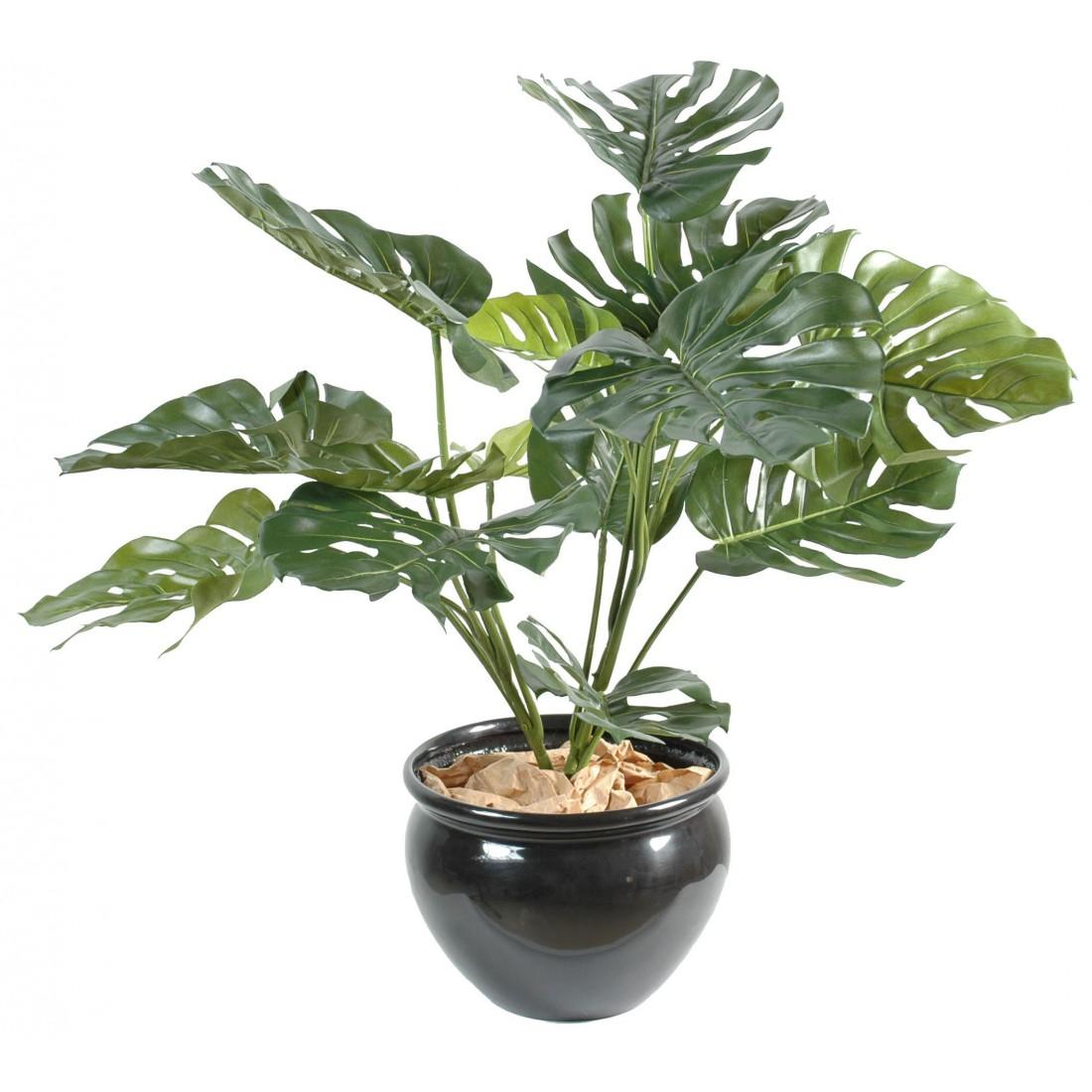 plante-artificielle-philodendron