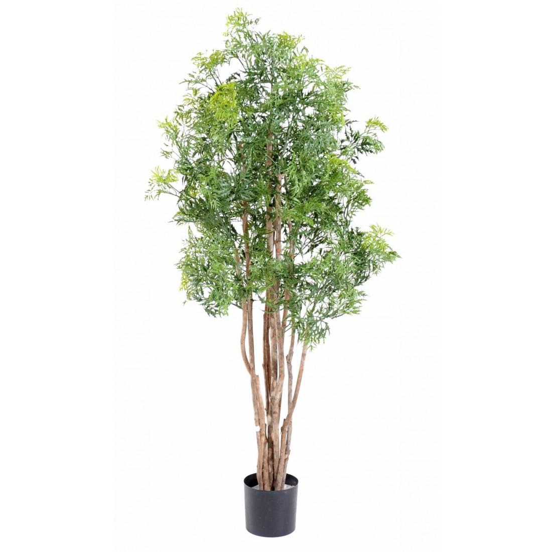 aralia artificiel ming nitida 150 et 180 cm autres arbres reflets nature lyon. Black Bedroom Furniture Sets. Home Design Ideas