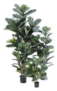 LYRATA artificiel (figuier)  60 à 130 cm