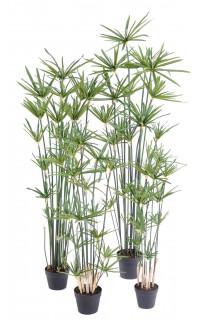 PAPYRUS artificiel ALTERNIFOLIUS 90 à 180 cm