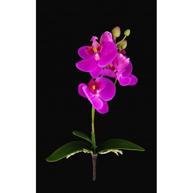 orchidée PHALAENOPSIS artificielle  30 cm