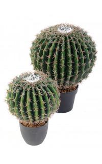 CACTUS artificiel ECHINO DIAM 20 ou 30 cm ou  Golden Barrel Cactus