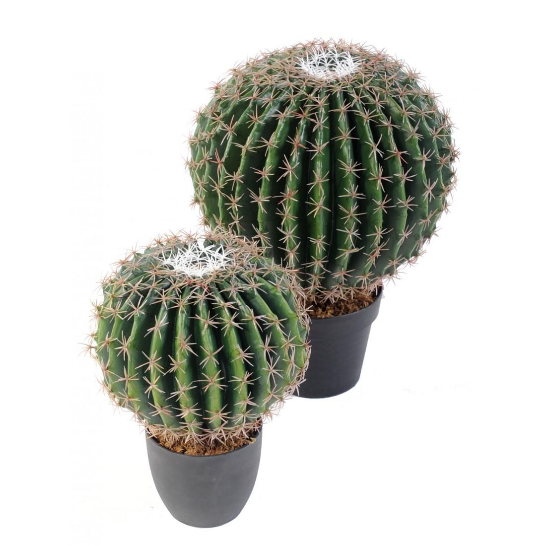 Cactus artificiel echino diam 20 ou 30 cm ou golden barrel for Mini cactus artificiel