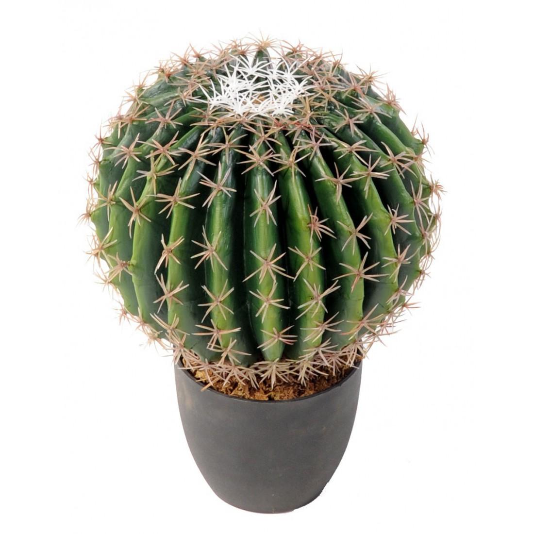 Cactus artificiel echino diam 20 ou 30 cm ou golden barrel for Cactus artificiel