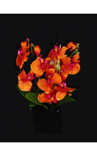 PHALAENOPSIS artificielle orange 32 cm en pot