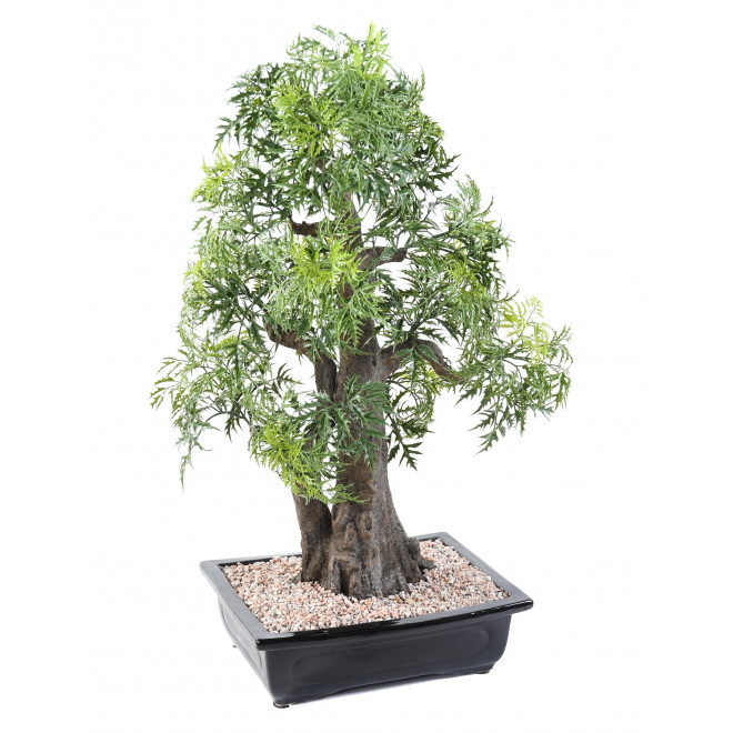 BONSAI artificiel ARALIA 80 cm