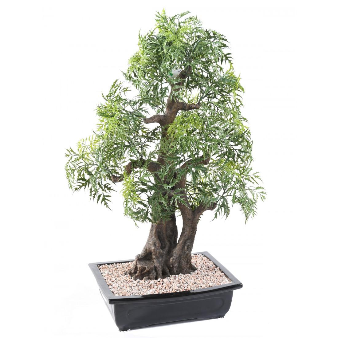 Bonsai artificiel aralia 80 cm bonsa s mini plantes for Plante artificielle grimpante