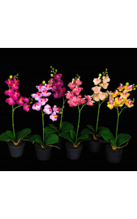 phalaenopsis ORCHIDEE artificielle 37 cm