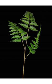 Branche FOUGERE artificielle  85 cm