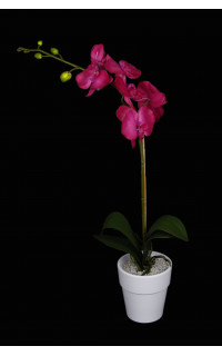 composition phalaenopsis ORCHIDEE artificielle 60 cm en pot