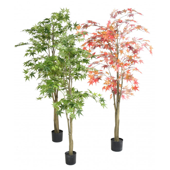 ARALIA artificiel DE LUXE (Erable)  150 et 180 cm