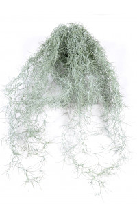TILLANDSIA artificiel (MOUSSE ESPAGNOLE) 60 cm