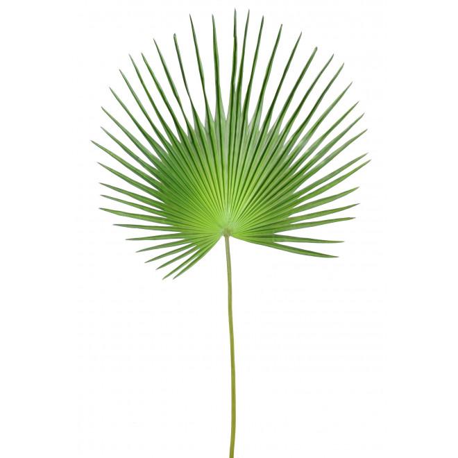Feuille palmier camerus 150 cm feuillages artificiels for Feuille palmier artificiel