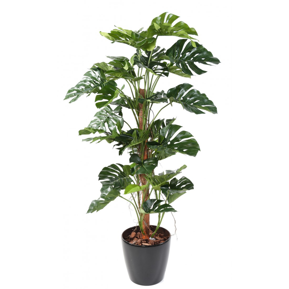 plante-artificielle-philodendron