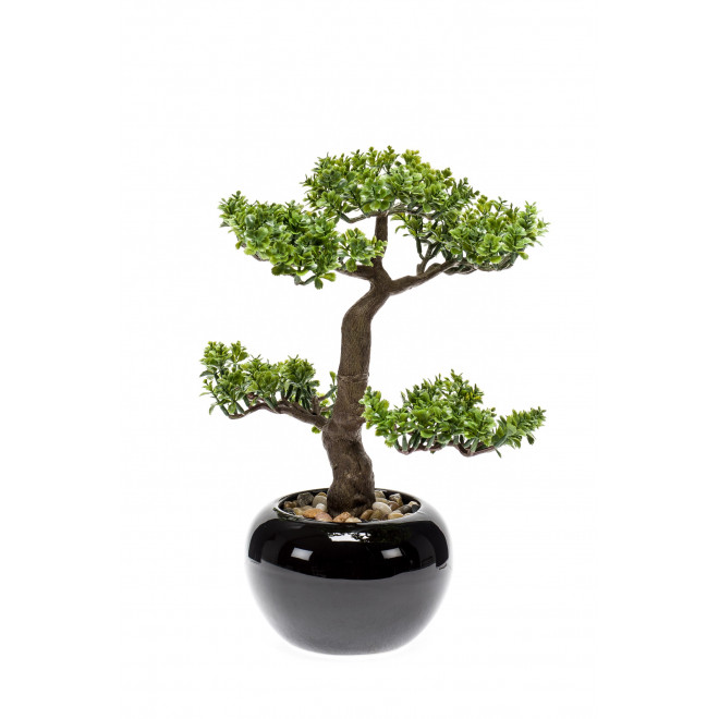 BONSAI piléa artificiel  34 cm