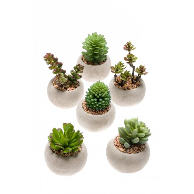 Succulentes artificielles en pot 7 10 cm cactus for Mini cactus artificiel