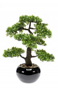 BONSAI Piléa artificiel  47 cm