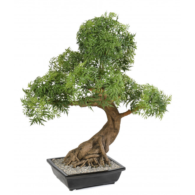 BONSAI artificiel ARALIA 95 cm