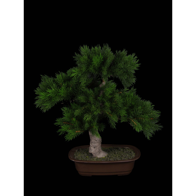 BONSAI pin artificiel  48 cm
