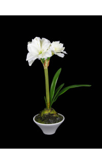 Amarylis artificiels fleurs intemporelles artificielles for Amaryllis plantation en pot