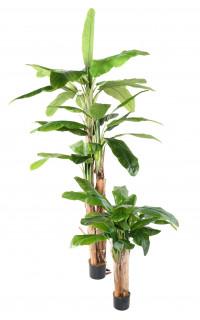 BANANIER artificiel 3 troncs 130 et 240 cm