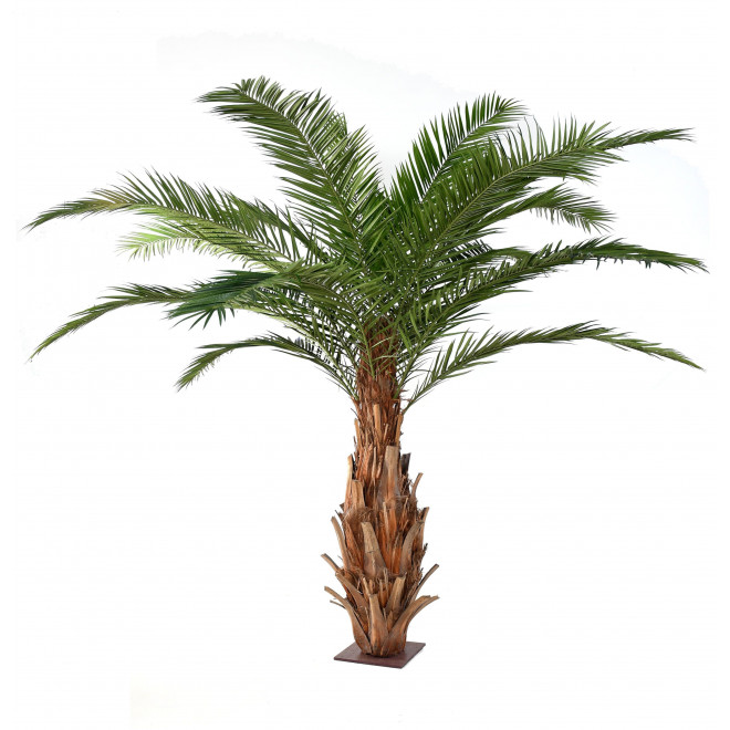 palmier PHOENIX artificiel CANARIENSIS  350 et 420 cm
