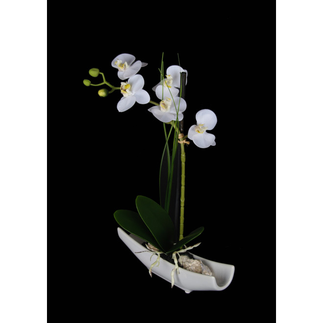 composition Phalaenopsis ORCHIDEE artificielle 70 cm