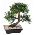 BONSAI artificiel BLACK WILLOW 50 cm