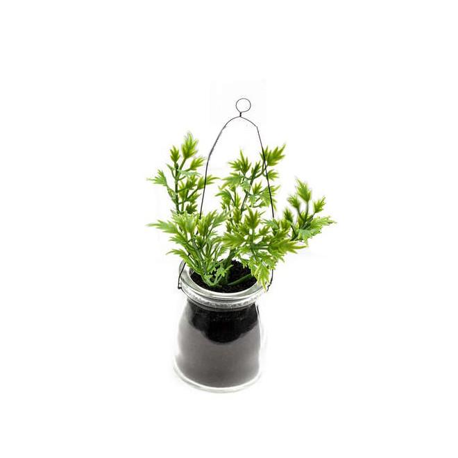 Herbes aromatiques en pot verre à poser ou à suspendre 14 cm